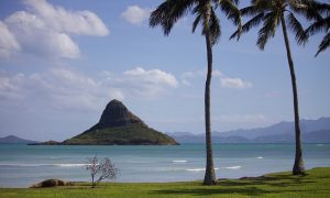 【留学前英語準備】(中学生)夏休みにハワイのサマースクール準備のための英会話レッスン
