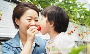 インターナショナル小学校 英語面接のためのママの英会話
