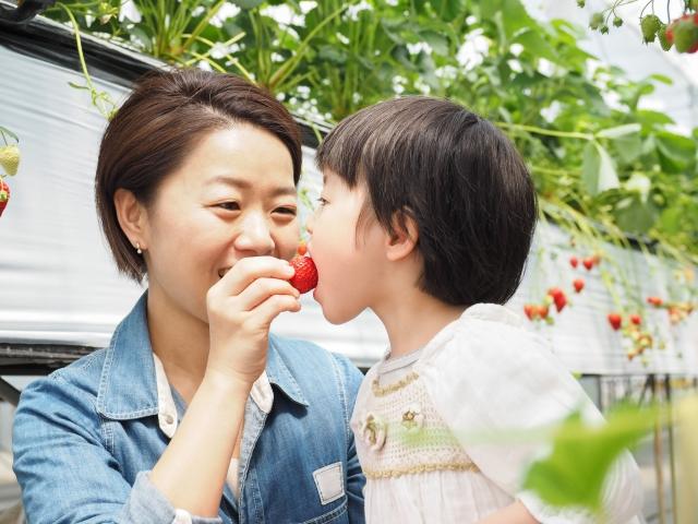【インターママ英会話】3歳の子供のインターナショナルスクール通園。外国人先生との会話や英語面接のための英会話