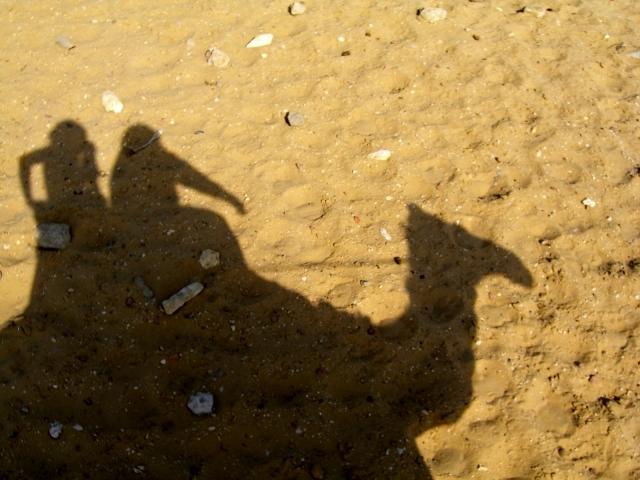 【海外駐在妻の英語準備】海外駐在で1歳児を連れてカタールに帯同する妻の英語準備レッスン