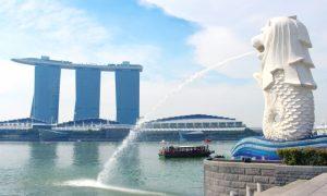 【海外駐在帯同前の直前対策】シンガポールへの海外転勤に帯同する妻の英会話レッスン