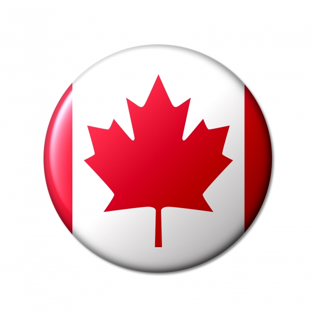 】1年後にカナダへワーホリに行くための英語準備、留学準備レッスン