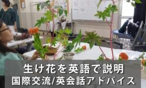 生け花(いけばな/華道)を英語で説明&生け花用語英語集