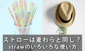 「ストロー=straw」は「麦わら」と同じ単語?strawの使い方